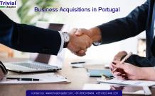 Business Acquisitions in Portugal