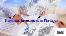 business investment in portugal