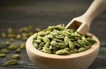 Top 13 Essential Indian Spices You Must Need to Know