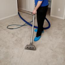Reliable Carpet Cleaners | Melbourne Carpet Steam Cleaning