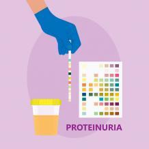 Ayurvedic Treatment for Proteinuria - Kidney and Ayurveda