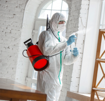 Pest Control | Disinfection | Sterilization & Sanitization Services Abu Dhabi - Shinex