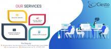 Website Design and Web Development Company in India