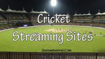 10+ Live Cricket Streaming Sites To Watch Cricket Online (2020)