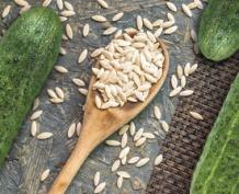 Global Cucumber Seeds Market Witnessing Robust Growth as Key Industry Leader BASF SE Inaugurates its state-of-the-art breeding center in Nunhem spread across 2.5 hectare