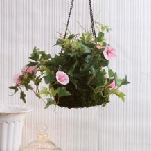 Buy latest designs of hanging planters at Wooden street