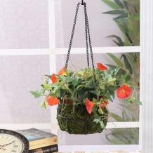 Balcony Planters: Buy Balcony Hanging Planters Online at Best Price | Wooden Street