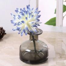 Glass Pots : Buy Glass Vases & Pots Online @ Upto 55% OFF | Wooden Street