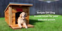 DIY Dog House Ideas for your beloved pooch