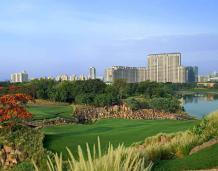 DLF The Camellias – Supreme Living with Smart Investment!