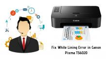 How to Fix White Lining Error in Canon Pixma TS6020?