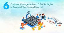 Easy to use CRM and Sales Strategies to Knockout Competition Flat