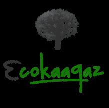 Ecofriendly & Simple Paper Bags   Ecokaagz