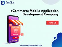 eCommerce Application Development Company, Online Store Application Development Company