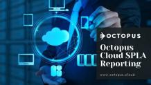 What are the main issues in Microsoft SPLA? - Octopus Cloud