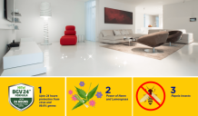 Floor Cleaners that are beyond doubt the best buys in the category - Emasol New