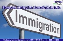 European Immigration Consultants in India - Trivial Chapter