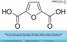 FDCA Production Cost Analysis Report 2021, Price Trends, Raw Materials Costs, Profit Margins, Land and Construction Costs 2026 | Syndicated Analytics – Murphy's Hockey Law
