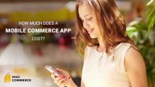 How Much Does A Mobile Ecommerce App Cost?