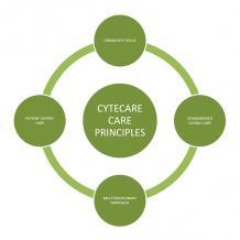 Cytecare cancer hospitals