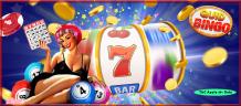 Perform find in free bingo no deposit progress?