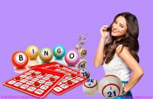 Compare Slotfrolic casino with others | Holy Bingo