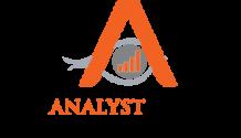 Digital Marketing Companies Buffalo   theanalystagency.com
