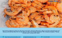 GCC Shrimp Market 2021: Industry Analysis, Price Trends, Growth, Opportunities and Forecast till 2026 – Syndicated Analytics – The Manomet Current