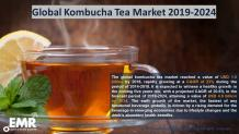 Kombucha Tea Market Size, Share, Price Trends, Growth, Report 2020-2025