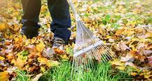 Green Waste Management Myths Debunked