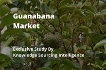 guanabana market