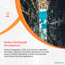Hedera Hashgraph Development | Hedera Hashgraph Solutions