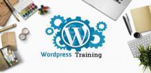 Professional Wordpress Training in Nagpur, Maharashtra