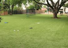 Residential Artificial Grass Turf Dogs Sports Field Playground Putting Green Biscayne Park Florida