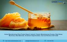 Honey Market and the Requirements for Setting up a Honey Manufacturing Plant Project Report 2021 - US News Breaking Today