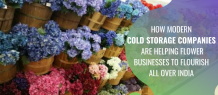 How Modern Cold Storage Companies are Helping Flower Businesses To Flourish All Over India