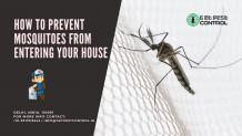 How to prevent mosquitoes from entering your house?