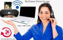 Common Hp printer problem in daily life Home/office