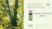 Les huiles essentielles pour cet automne - Le Blog PharmaExpress
