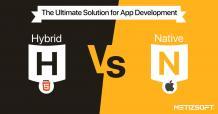Hybrid vs Native App