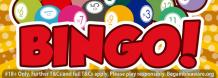 Bingo Sites New - The most games to play new online bingo sites