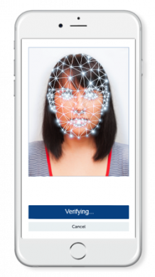 Global Id Verification Service In Singapore