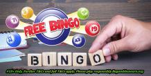 Make Use of the Best Gaming Platform to Play Free Bingo Sites UK Games