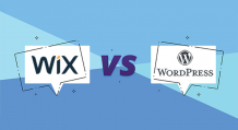 WIX or WordPress what is best for Real Estate Web Development