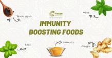 Immunity Boosting Foods - Cytecare Hospital in Bangalore