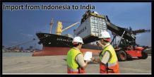 Indonesia Import Data