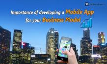 Importance of Developing a Mobile App for your Business Model - TopDevelopers.co