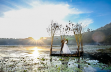 Preserve the Beautiful Moments with Wedding Videographers