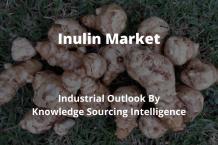 inulin market
