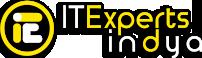 Web and Custom software Development Company | ITExpertsIndya